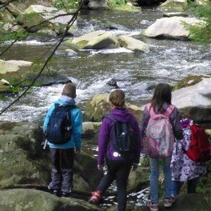 Environmentální výchova pro ZŠ - příroda (celodenní)