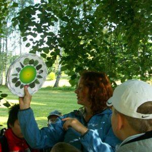 Environmentální výchova pro ZŠ - příroda, jednodenní