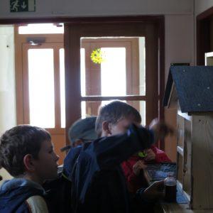 Environmentální výchova pro ZŠ - projektové dny